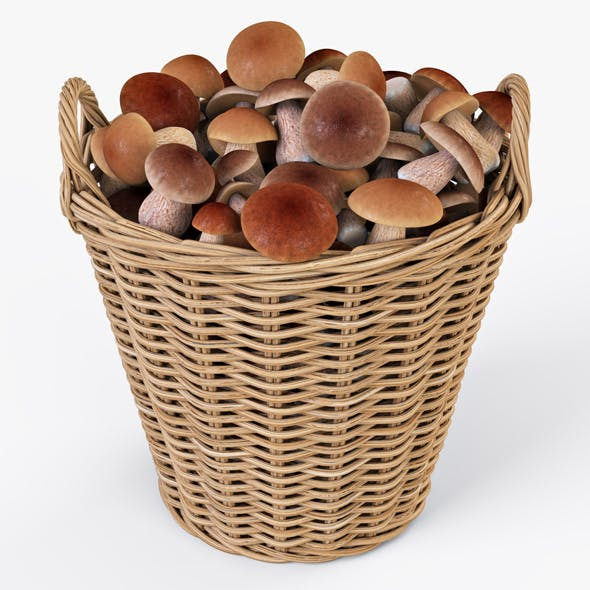 Wicker Basket Ikea Nipprig with Mushrooms
