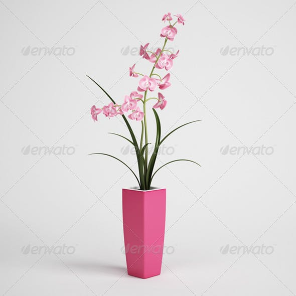 CGAxis Potted Plant 04