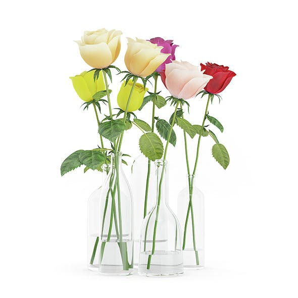 Roses in Glass Vases