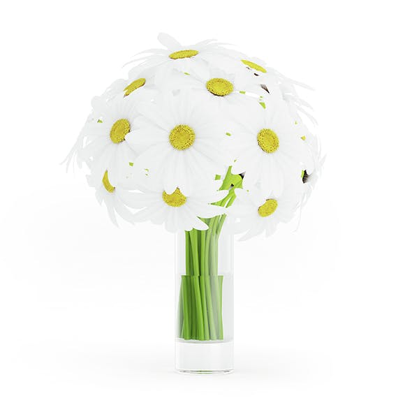 Daisies in Glass Vase
