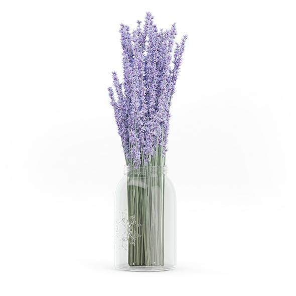 Purple Lupine in a Jar - 3DOcean Item for Sale