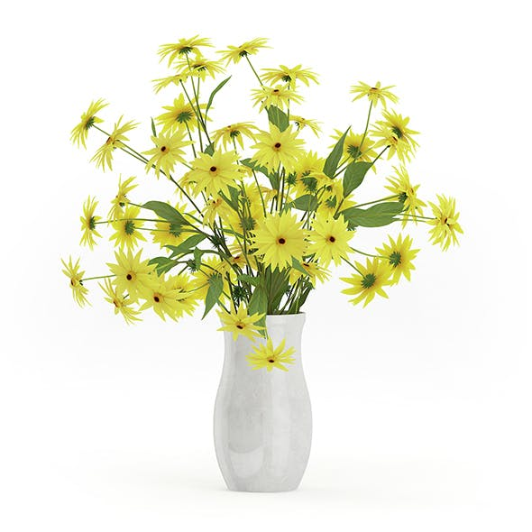 Coneflowers in Ceramic Vase