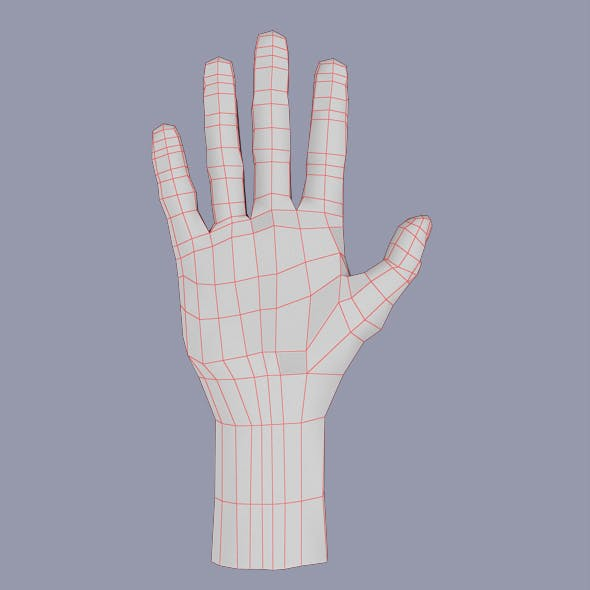 Hand Human Male
