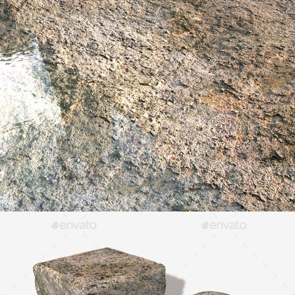 Grimy Sea Rock Seamless Texture