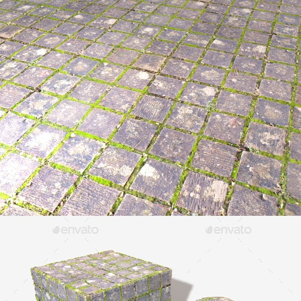 Mossy Square Cobbles Seamless Texture