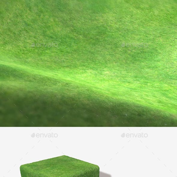 Grass From A High Angle Seamless Texture