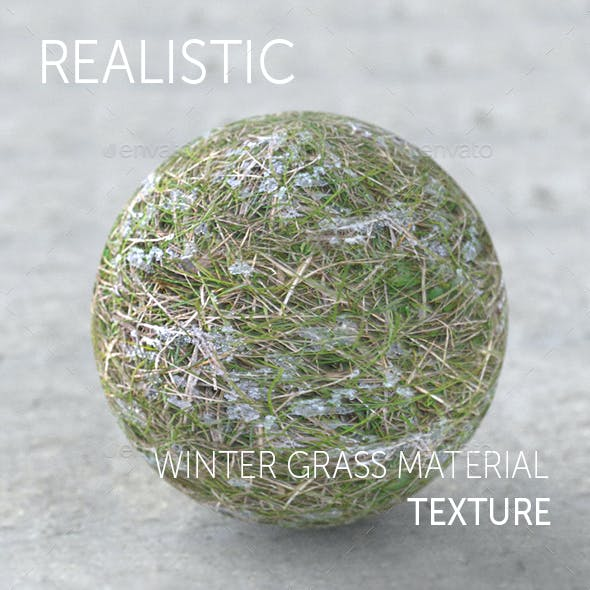 Winter grass realistic texture