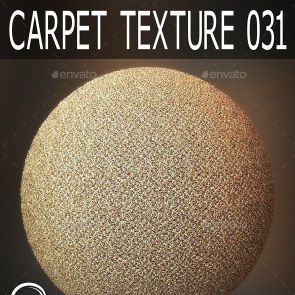 Carpet Textures 031
