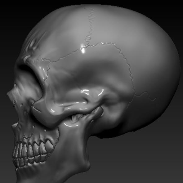 Skull Special 3D