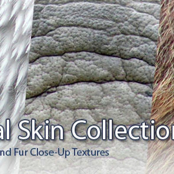 45 Animal Skins