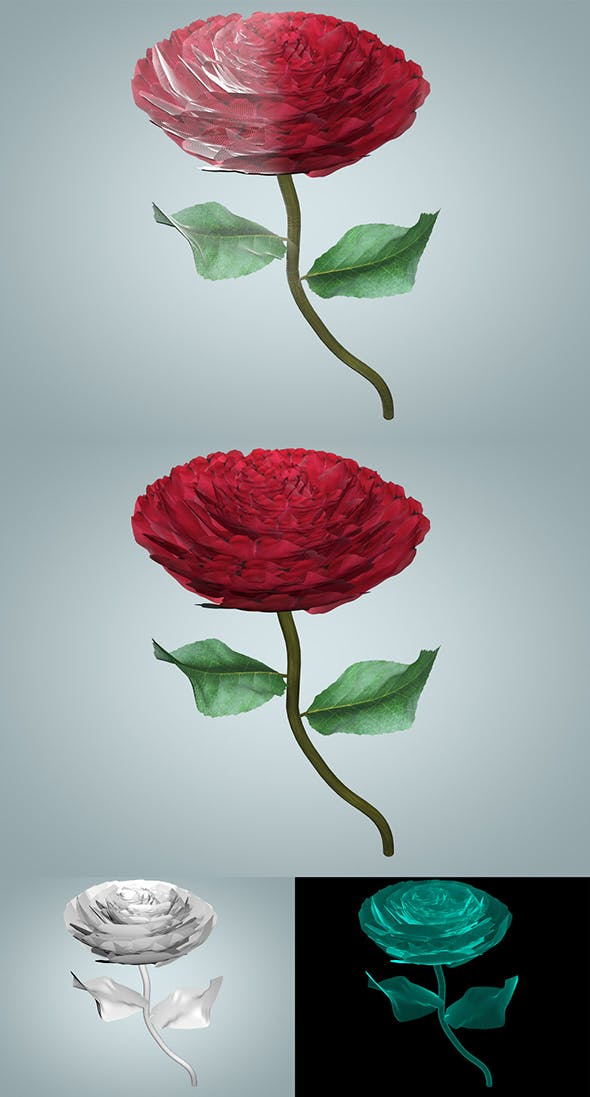 Rose - 3DOcean Item for Sale