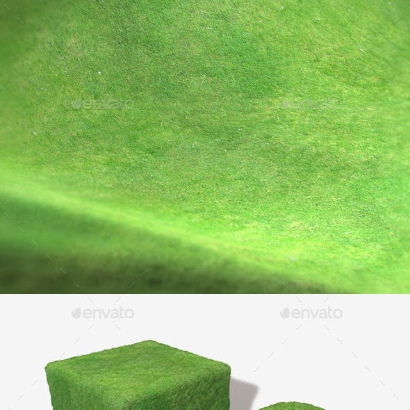 Grass Birds Eye View Seamless Texture