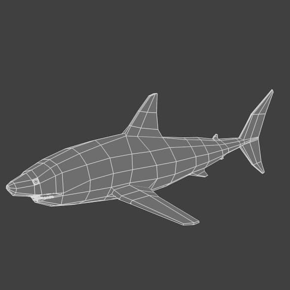 Low Poly Base Mesh Shark