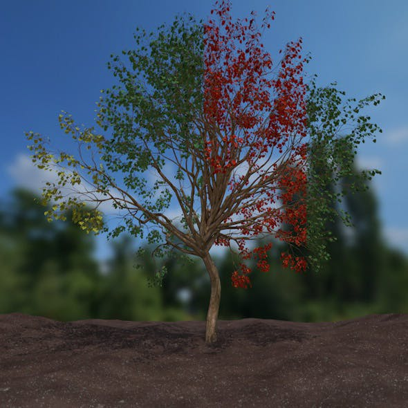 high poly tree