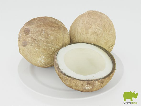 Coconuts 3D Model - 3DOcean Item for Sale