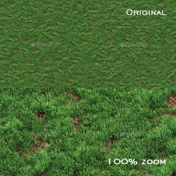 Grass seamless texture for CG - 3DOcean Item for Sale