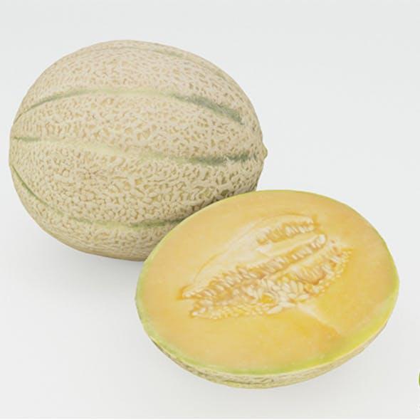 Melons 3D Model