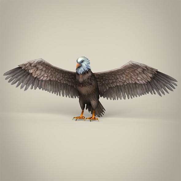 Low Poly Realistic Eagle - 3DOcean Item for Sale