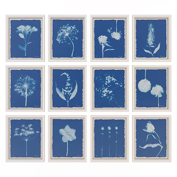 Charlotte Morgan Wild Meadow Flowers 2 - 3DOcean Item for Sale