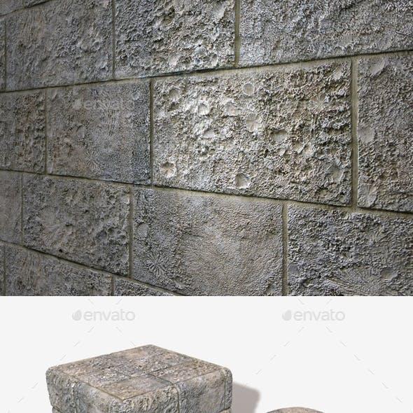 Fossil Printed Bricks Seamless Texture