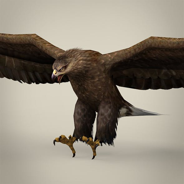 Game Ready Realistic Eagle