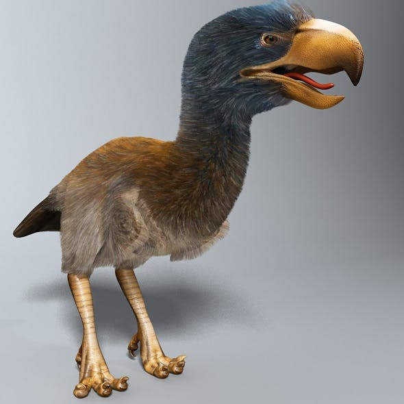 Titanis Walleri - Terror Bird RIGGED