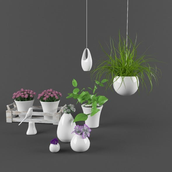 Plants set with ceramic decore