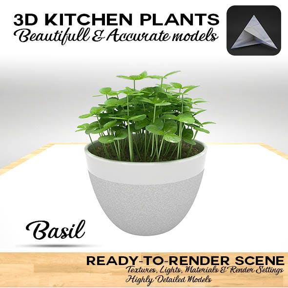 Basil Pot 3D