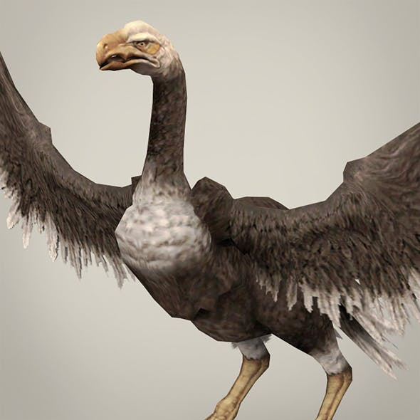 Game Ready Fantasy Vulture - 3DOcean Item for Sale