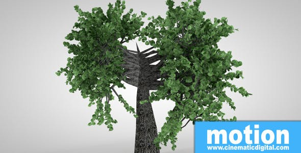 Exotic Trees Package 1.0.0 - 3DOcean Item for Sale