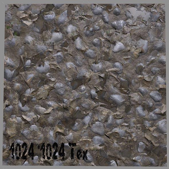 Floor _12