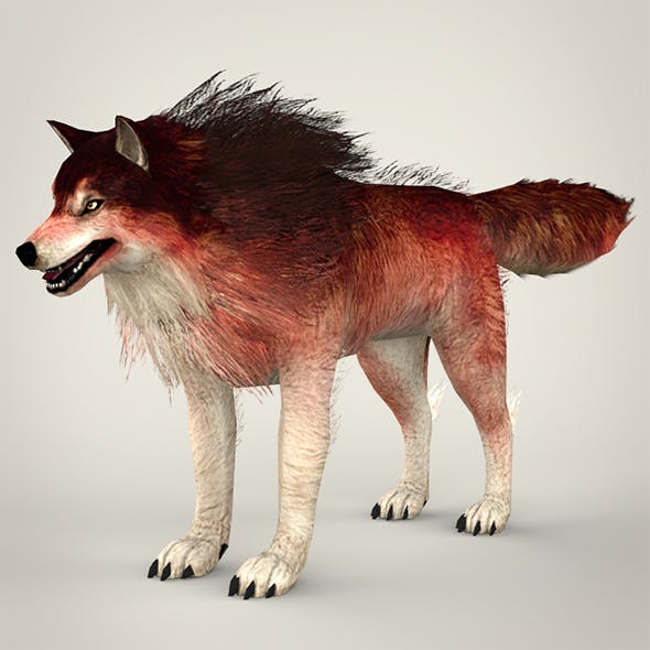 Red Wolf - 3DOcean Item for Sale