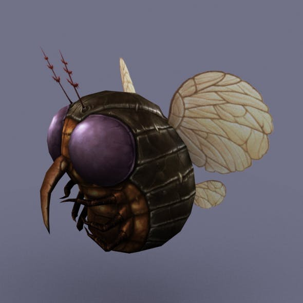 Fly_Round_01