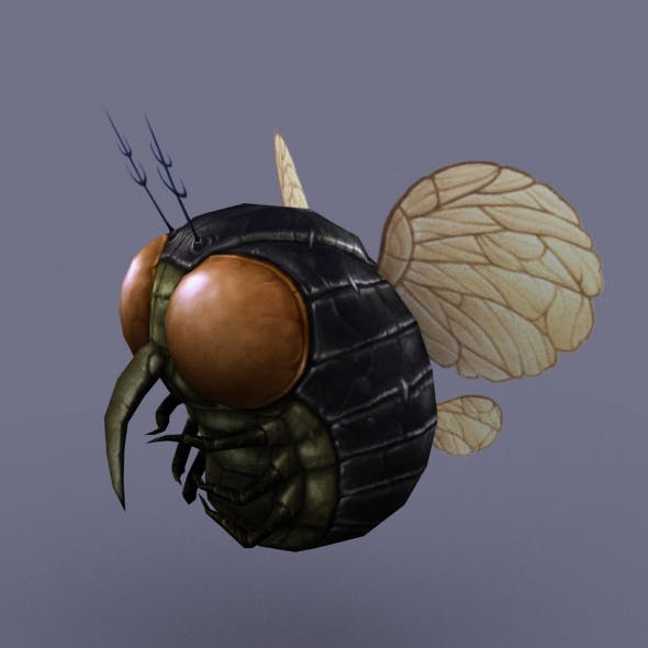 Fly_Round_03