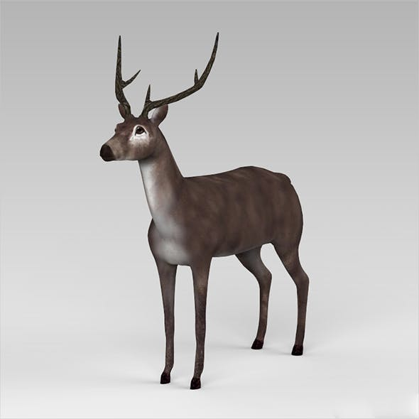 Low Poly Buck - 3DOcean Item for Sale
