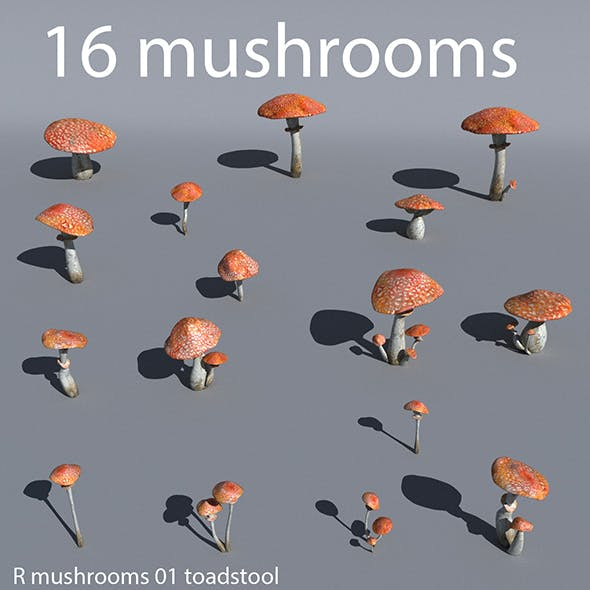 Mushrooms collection 01