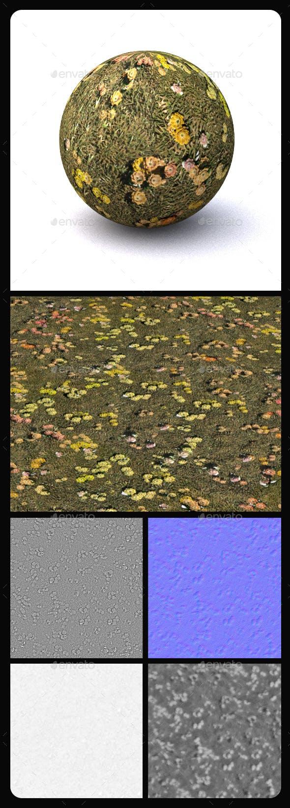 Grass Tile Texture 3 - 3DOcean Item for Sale