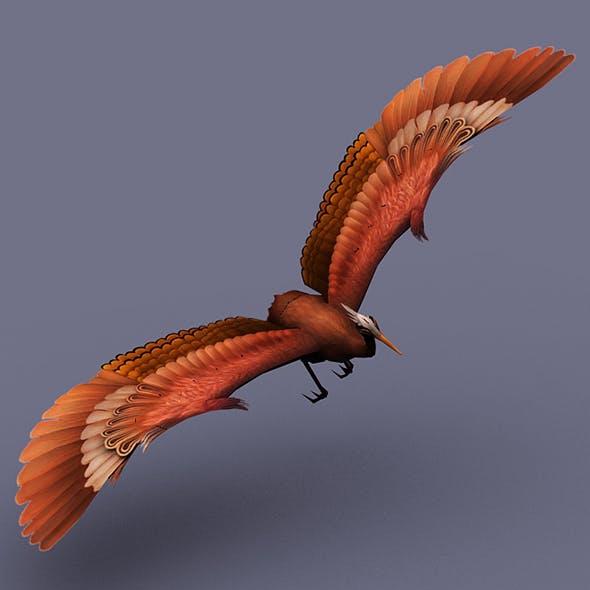 stork brown