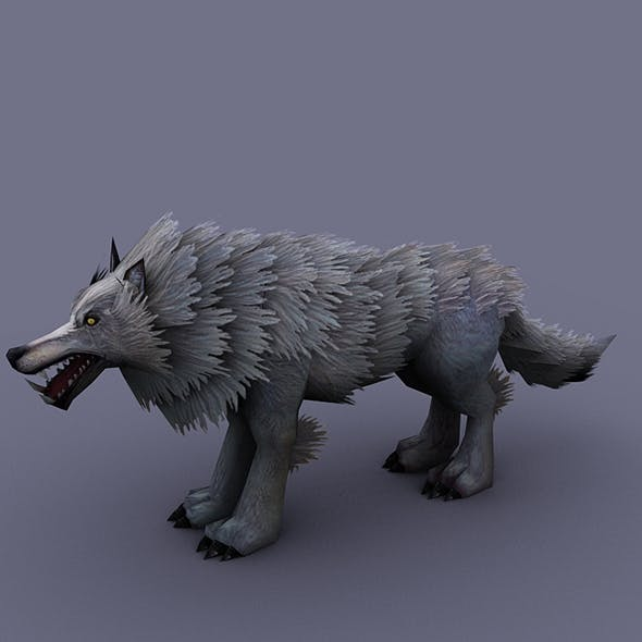 wolf white - 3DOcean Item for Sale