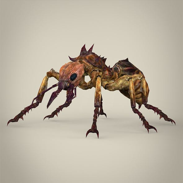 Fantasy Warrior Ant