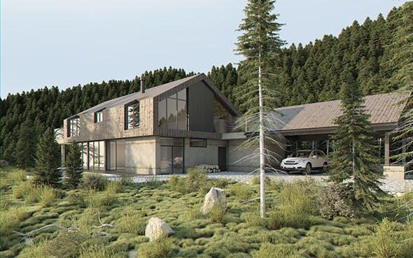 Vray Exterior Lighting Pro Daylight Settings - rendering forest full scene - 3DOcean Item for Sale