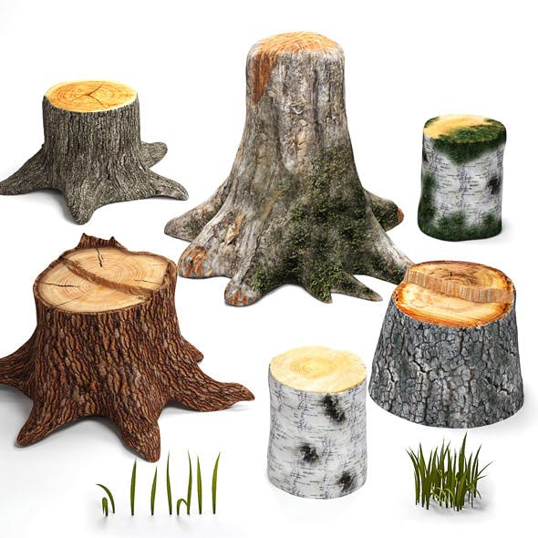 Tree stumps collection