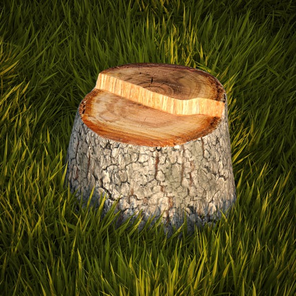 Tree stump - 3DOcean Item for Sale