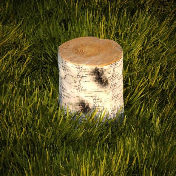Birch stump