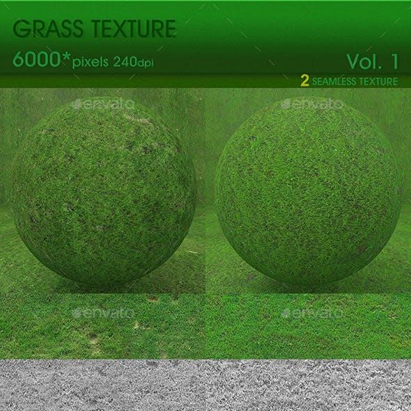 High Resolution Grass Texture Vol.1 (2 PCS) - 3DOcean Item for Sale
