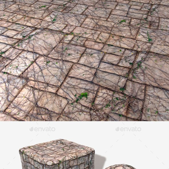 Vine Covered Stone Wall Seamless Texture