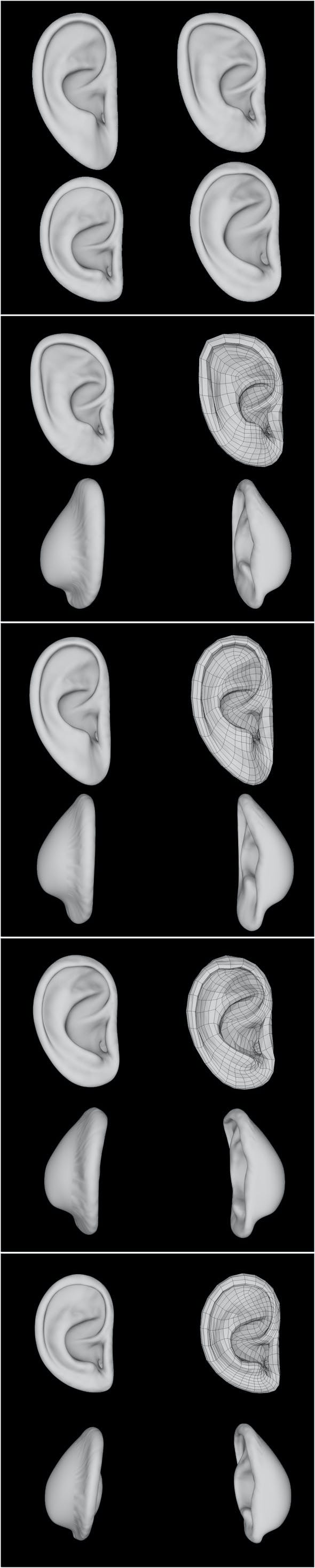 Ear - Full Edition for all pro 3D - 3DOcean Item for Sale