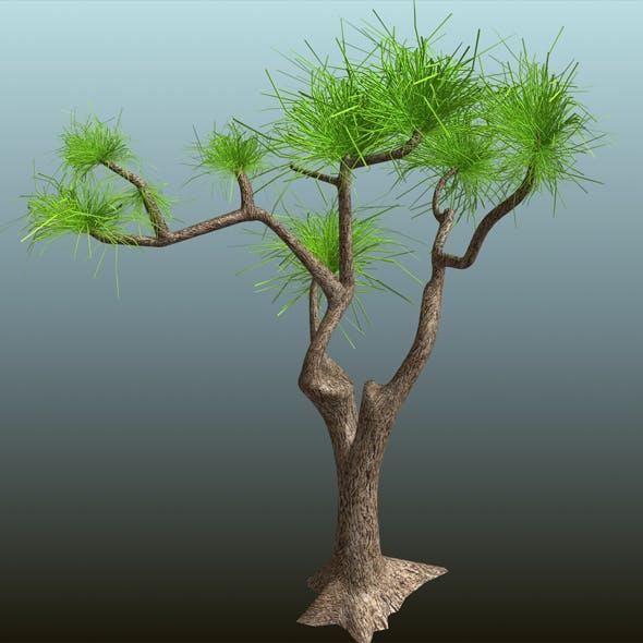 Tree_01 - 3DOcean Item for Sale