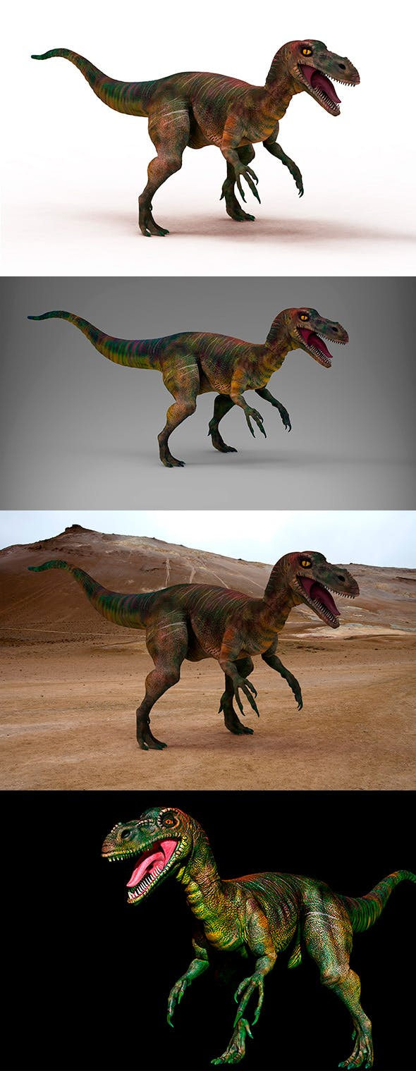 Dinosaur - Velociraptor - Low & High Poly - 3DOcean Item for Sale