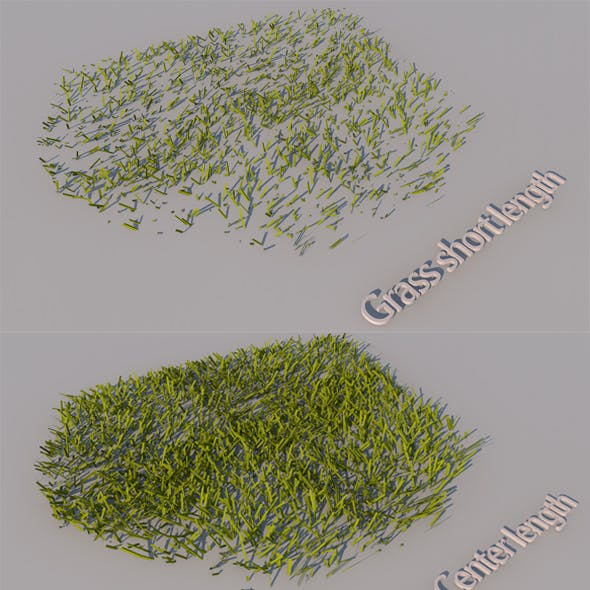Grass of a different size